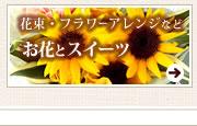 父の日 お花・花束・鉢植えとスイーツ