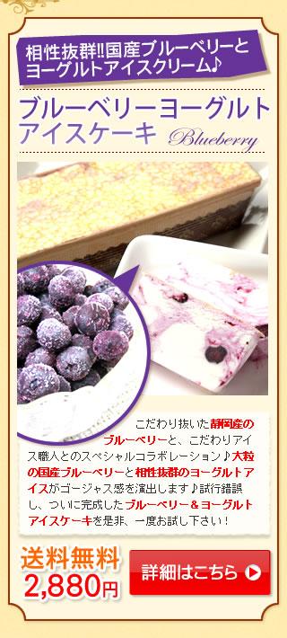 ブルーベリーアイスケーキ