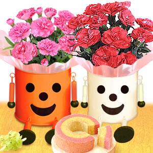 母の日のプレゼント ブリキマンポットとミニケイトウ&カップケーキ