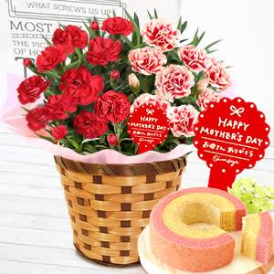 母の日のプレゼント 嬉しい赤とピンクコンビ★母の日カーネーション!スイーツ付