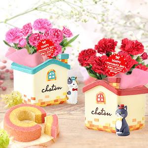 母の日のプレゼント 猫ハウス鉢カーネーション&苺ミニバウム