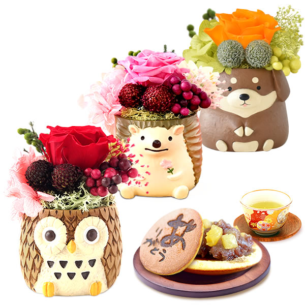 母の日のプレゼント 可愛いミニポットプリザ&和菓子