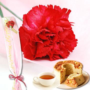 母の日のプレゼント 1輪カーネーション&シフォンケーキセット